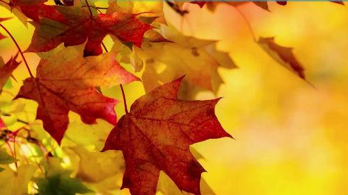 лунный календарь и фазы луны на октябрь