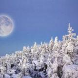 какая сейчас луна в январе