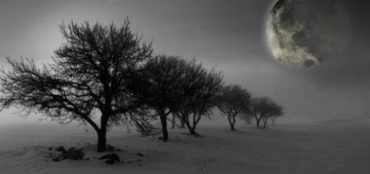 какая сейчас луна в феврале