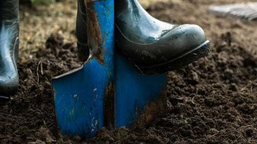 когда копать огород осенью или весной