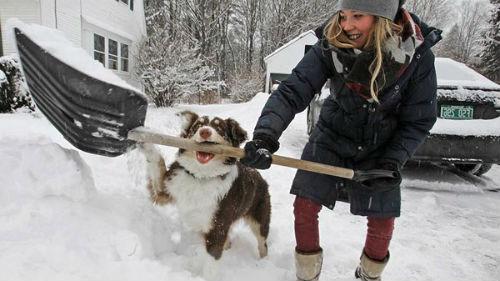 чистить снег вокруг дома в январе