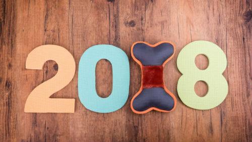 год земляной собаки 2018