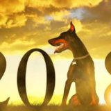 предсказание желтой собаки 2018