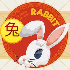 финансовый гороскоп кролик
