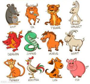 пантеон животных
