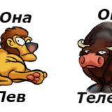 гороскоп совместимости женщина-лев и мужчина-телец