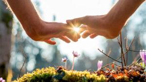 индекс совместимости влюбленных