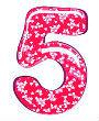 трактовка числа сердца пять