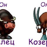 гороскоп совместимости женщина-козерог и мужчина-телец