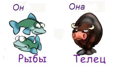 Рыбы и телец дружба