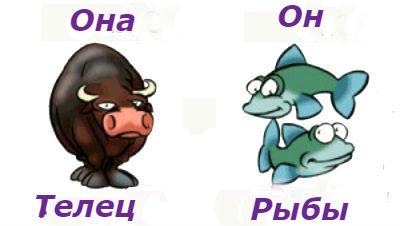 гороскоп совместимости женщина-Телец и мужчина-Рыба