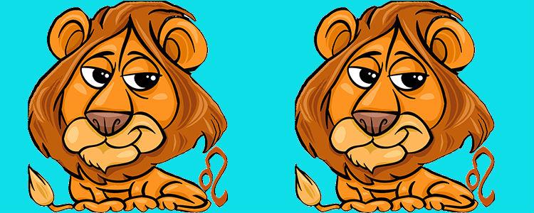 отношения между львом и львом