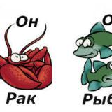 совместимость мужчина-рак женщина-рыбы