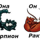 совместимость мужчина-рак женщина-скорпион