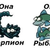совместимость женщина-скорпион и мужчина-рыбы