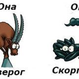 совместимость мужчина-Скорпион и женщина-Козерог