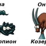 Гороскоп совместимости женщина-Скорпион и мужчина-Козерог
