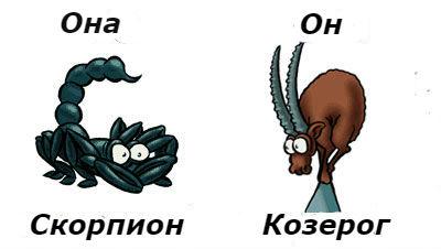 совместимость женщина-Скорпион и мужчина-Козерог