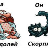совместимость мужчина-Скорпион иженщина-Водолей