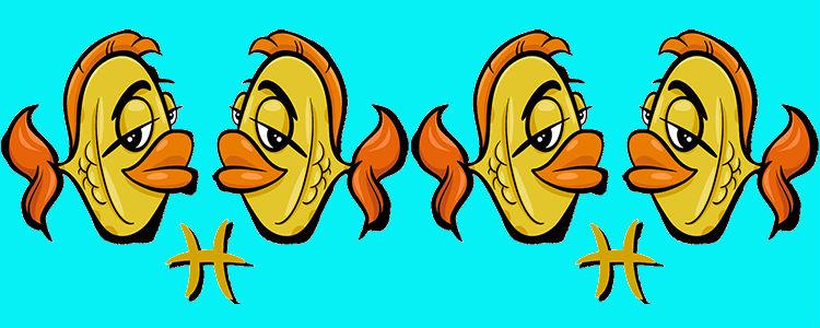 отношения между рыбой и рыбой