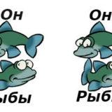 совместимость мужчина-рыбы и женщина-рыбы