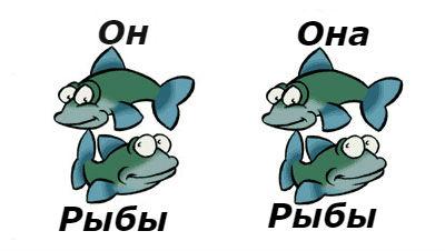 Совместимость рыбы и рыбы в супружеском браке достаточно высока, так как два представителя знака воды замечательно уживаются друг с другом.