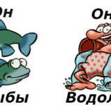 совместимость мужчина-рыбы и женщина-водолей