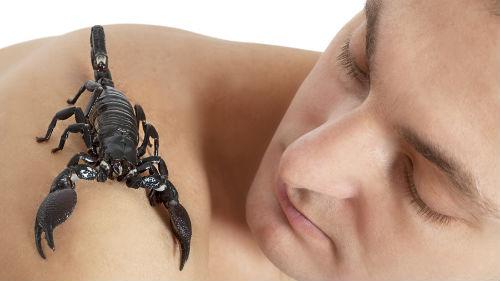 мужчина-скорпион по гороскопу