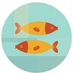 рыбы совместимость по гороскопу на 2019 год
