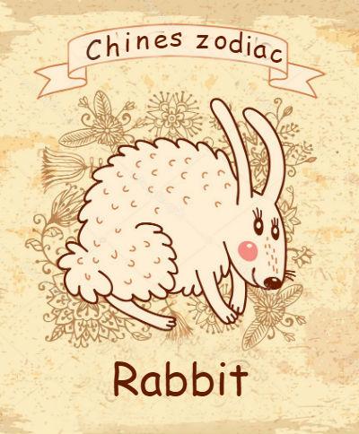 год свиньи для кролика 2019 по восточному календарю