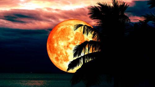лунное затмение 17 июля 2019 года