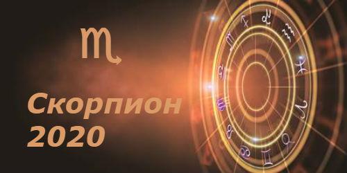 гороскоп 2020 год крысы для скорпиона