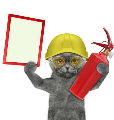 год крысы 2020 для огненного кота-кролика