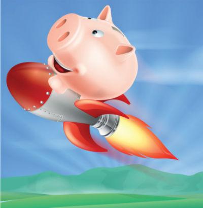 год крысы 2020 для огненной свиньи