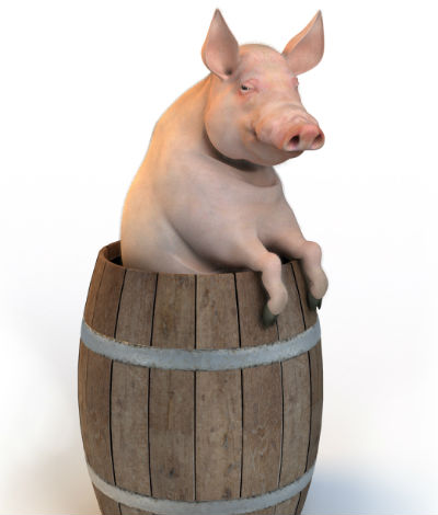 год крысы 2020 для деревянной свиньи