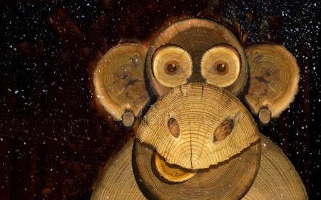 год крысы для деревянной обезьяны