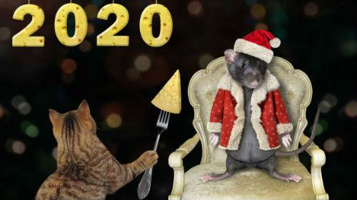 что нужно для встречи нового 2020 года белой мыши