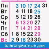 телец гороскоп на август 2020 года